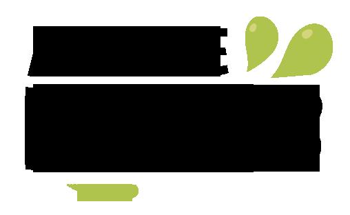 Logo Agence Kiweb